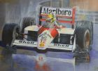 Fond Reflection- Ayrton Senna